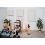 RW Acoustics Professional